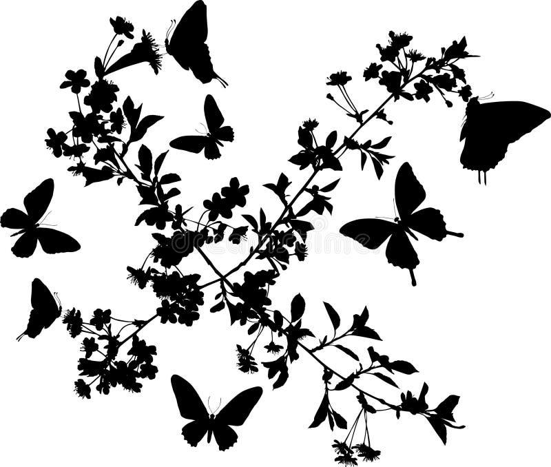 Quatro filiais de sakura com borboletas ilustração stock