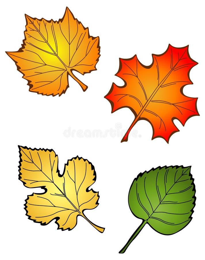 Quatro folhas