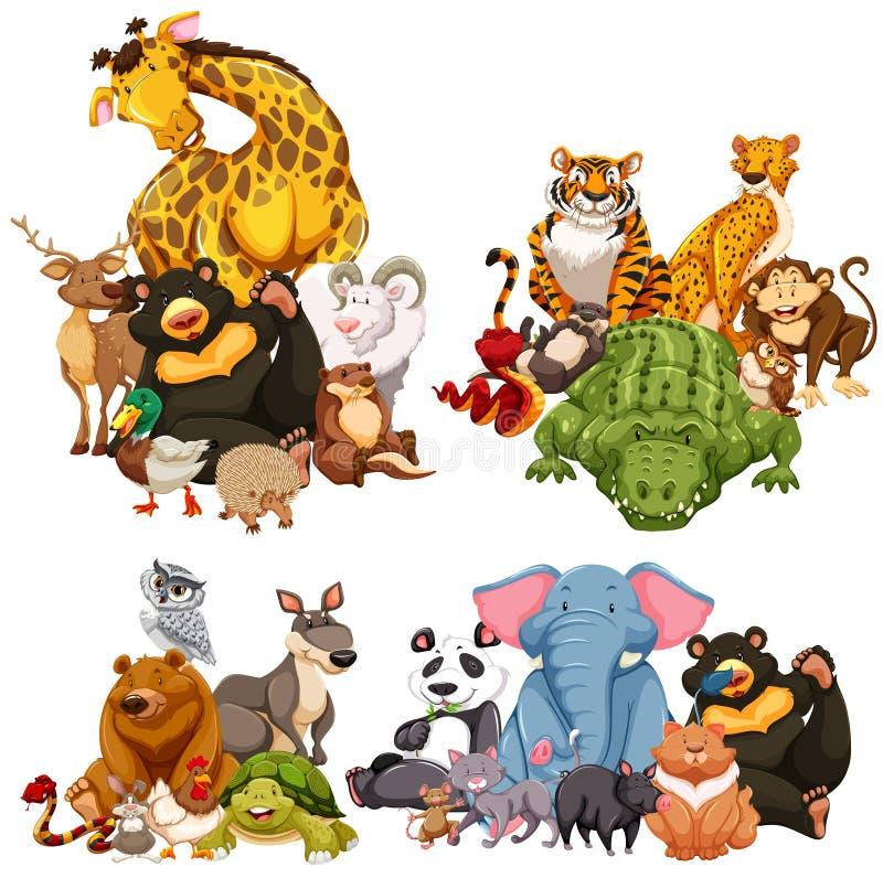 Quatro grupos de animais selvagens ilustração do vetor