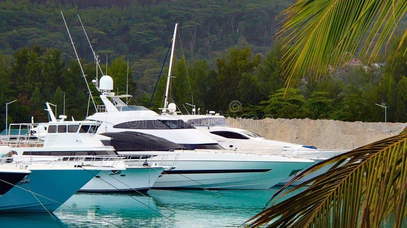 Quatro iate brancos em um porto nos seychelles fotos de stock royalty free