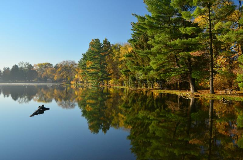 Quatro lagos Forest Preserve fotografia de stock royalty free