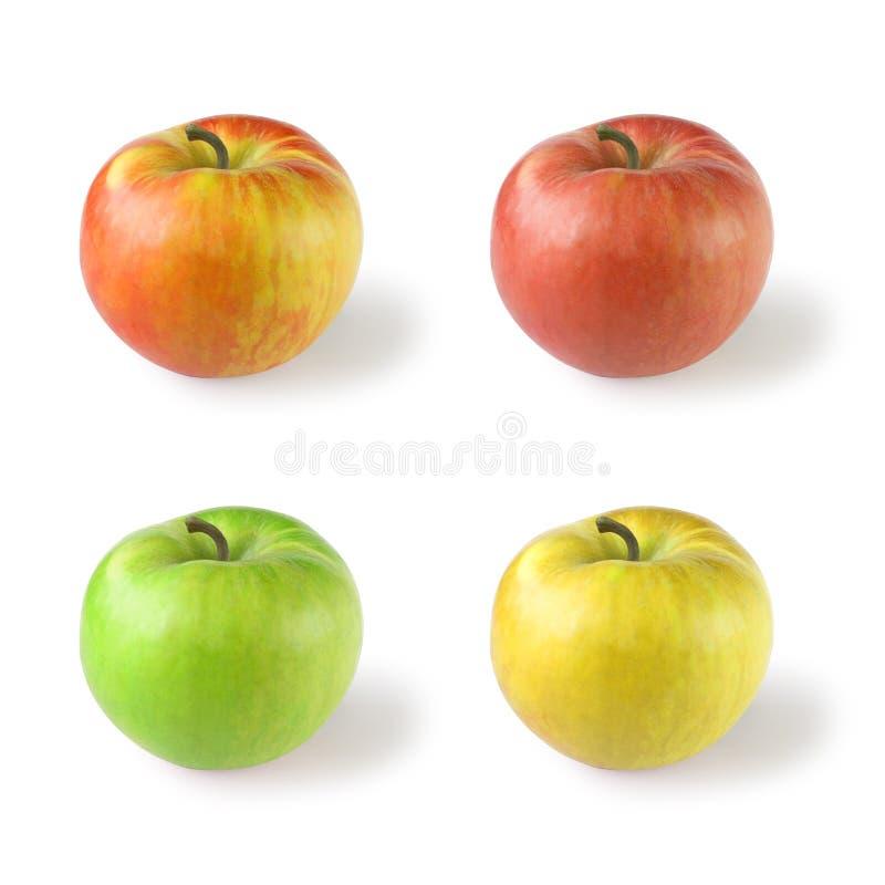 Quatro maçãs imagem de stock