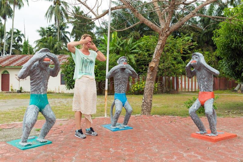 Quatro macacos sábios fotos de stock royalty free