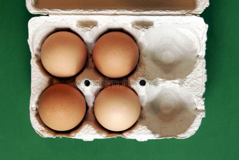 Quatro ovos fotografia de stock