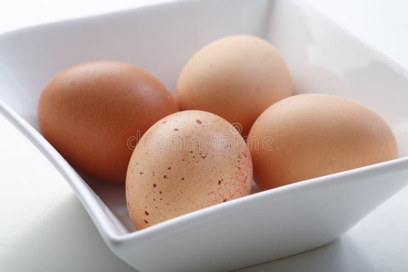 Quatro ovos imagem de stock