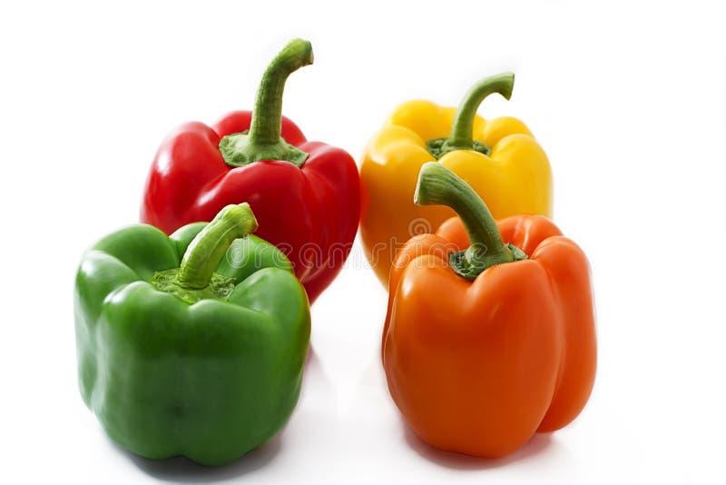 Quatro paprika coloridas fotografia de stock