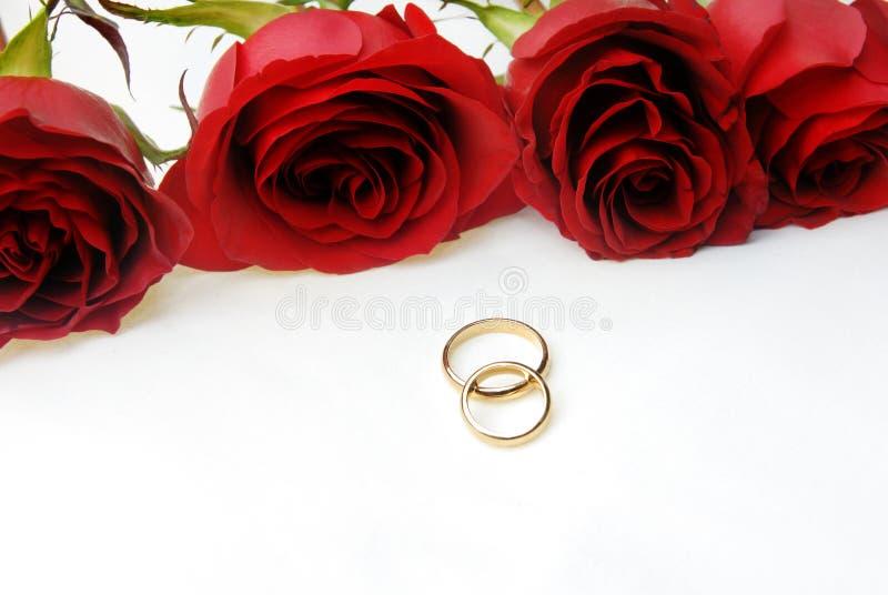 Quatro rosas e dois anéis de casamento imagens de stock royalty free
