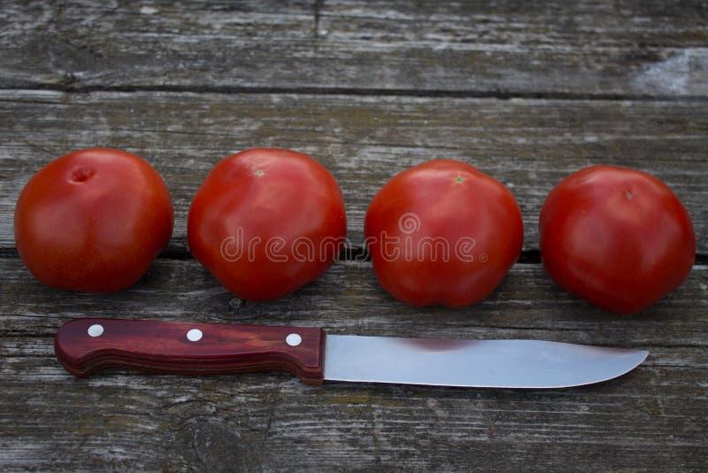 Quatro tomates vermelhos maduros em uma tabela de madeira velha fotografia de stock royalty free