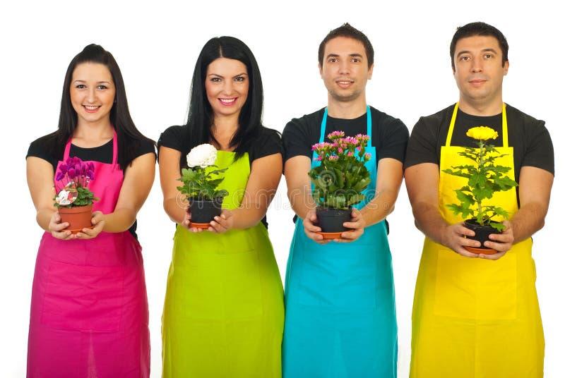 Quatro trabalhadores do florista que mostram plantas fotos de stock royalty free