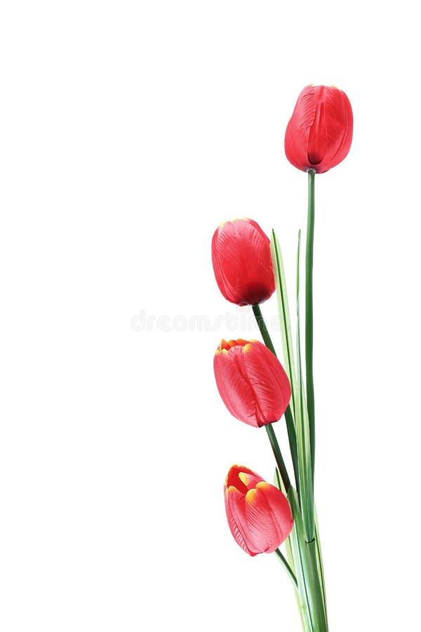 quatro tulipas vermelhas artificiais isoladas no branco imagem de stock royalty free