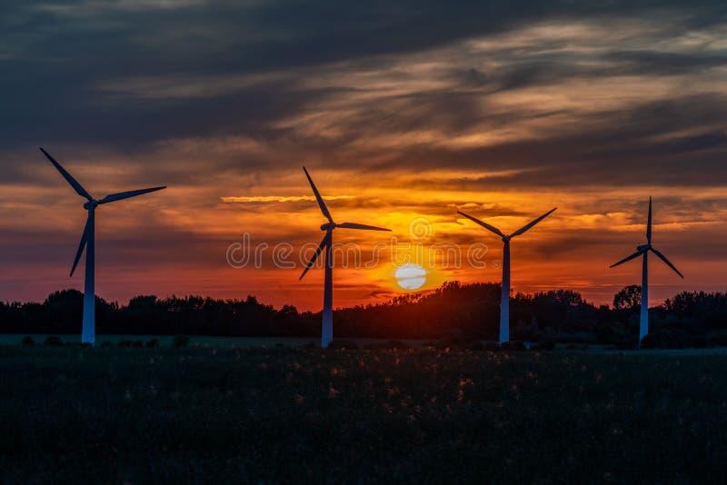 Quatro turbinas eólicas em um campo contra um por do sol dourado imagens de stock royalty free
