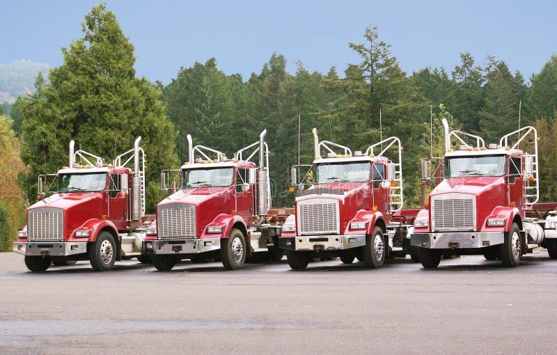 Quattro camion di trasporto di ceppo nell'iarda di manutenzione. immagine stock