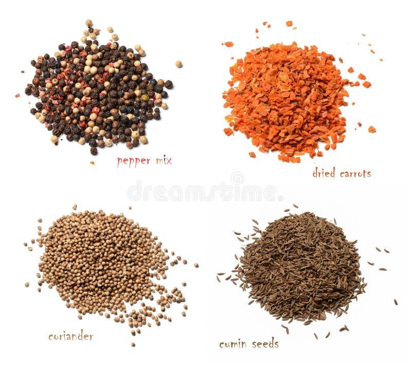 Quattro generi di spezie secche Una miscela dei peperoni, carote secche, coriandolo, semi di cumino Fondo isolato bianco fotografia stock libera da diritti