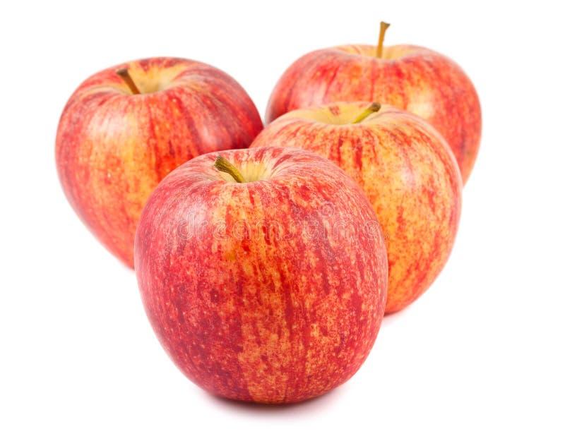 Quattro mele rosse mature fotografia stock libera da diritti