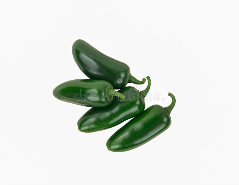 Quattro peperoni piccanti verdi del jalapeno isolati su bianco fotografia stock