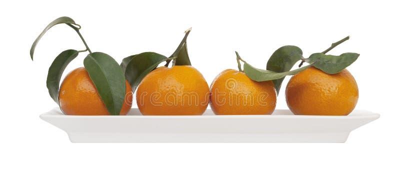 Quattro piccole arance succose, mandarini, con le foglie sul piatto bianco isolato su bianco Frutta fresca moderna e minimalista fotografia stock