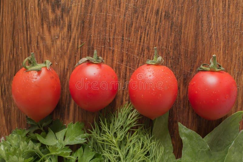 Quattro pomodori fotografia stock libera da diritti