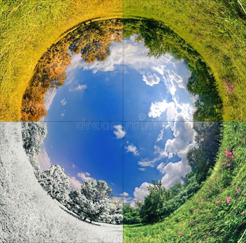 Quattro stagioni immagini stock libere da diritti