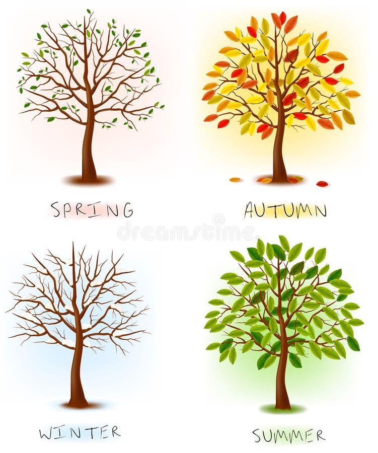 Quattro stagioni - sorgente, estate, autunno, inverno. illustrazione vettoriale