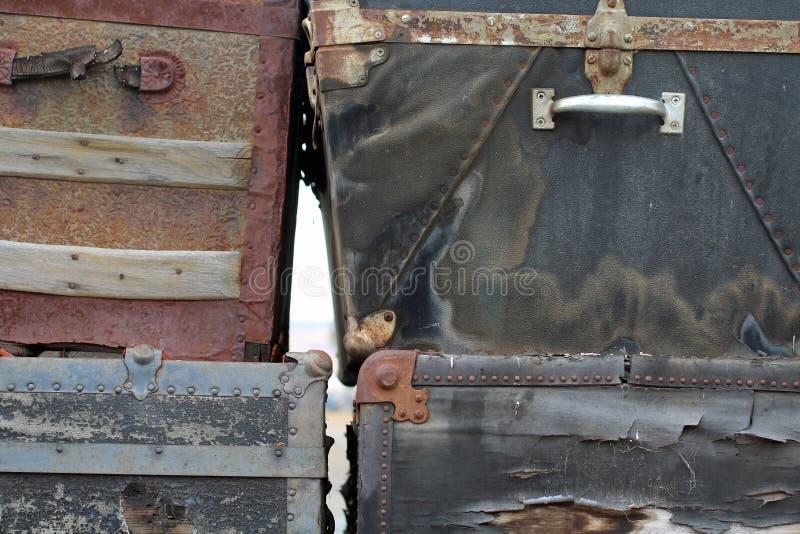 Quattro tronchi d'annata fotografie stock libere da diritti