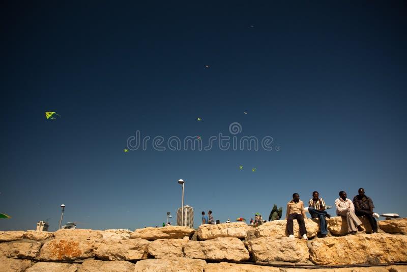 Quattro uomini godono dell'estate sul muro di mattoni sulla spiaggia immagini stock libere da diritti