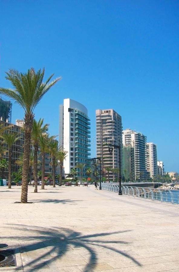 Quay con la palma, costruzioni Beirut, Libano fotografia stock