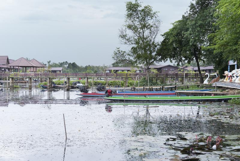 Quay de bateau de long-queue en parc national pour le tourisme images libres de droits