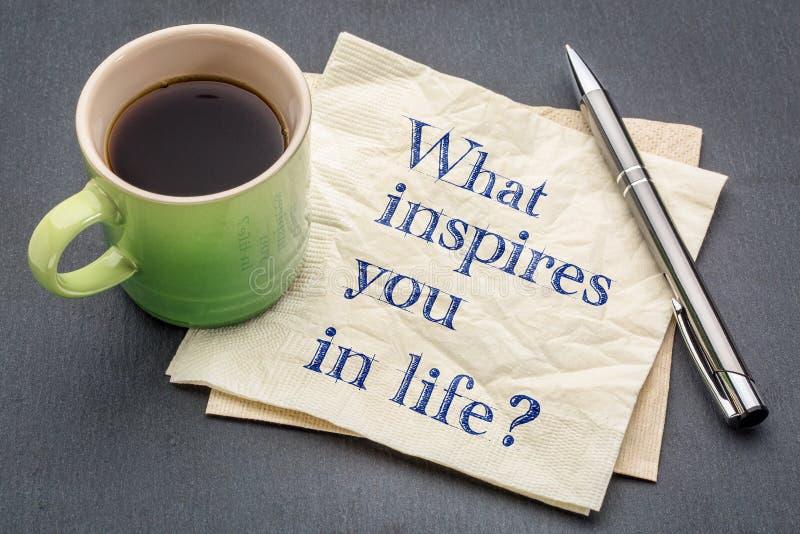 Que vous inspire dans la vie ? images libres de droits