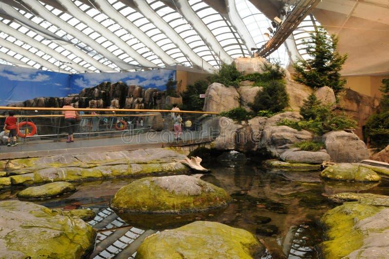 Quebec, biodome van Montreal royalty-vrije stock afbeeldingen