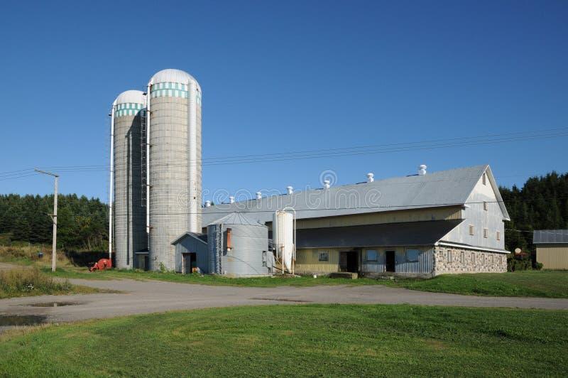 Quebec, gospodarstwo rolne w L wyspa Verte obraz royalty free