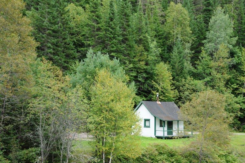 Quebec, stary dom w Matapedia lesie w Gaspesie obrazy royalty free