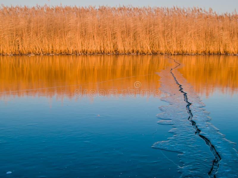 Quebra do gelo em um lago imagem de stock royalty free