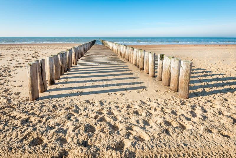 Quebra-mar de madeira tradicional em uma praia holandesa vazia foto de stock