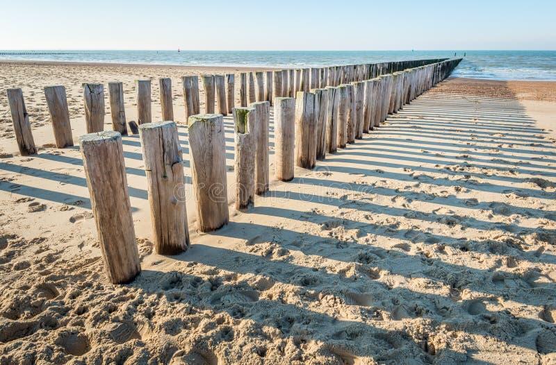 Quebra-mar de madeira tradicional em uma praia holandesa vazia imagens de stock royalty free