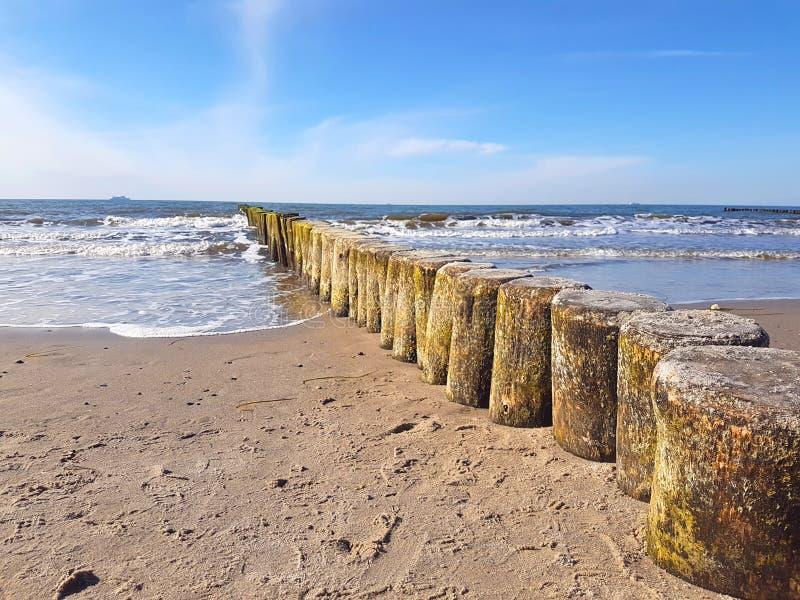 Quebra-mares de madeira ( groynes) na costa Báltico fotografia de stock