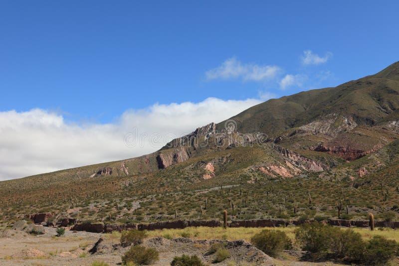 Quebrada Argentina royaltyfri foto