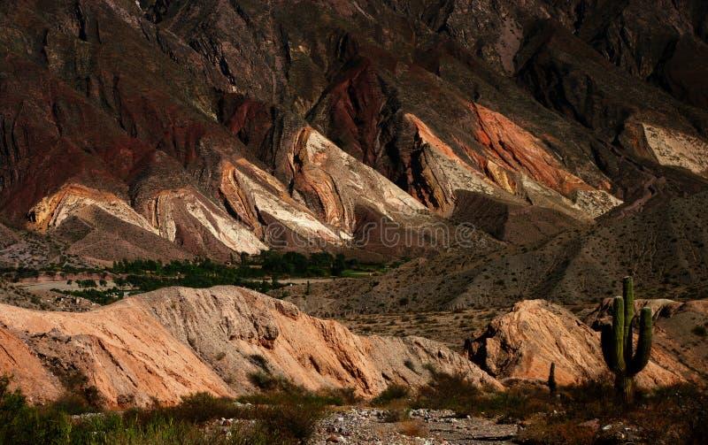 Quebrada DE Humahuaca royalty-vrije stock foto