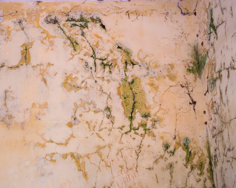 Quebras e molde em uma parede velha imagem de stock
