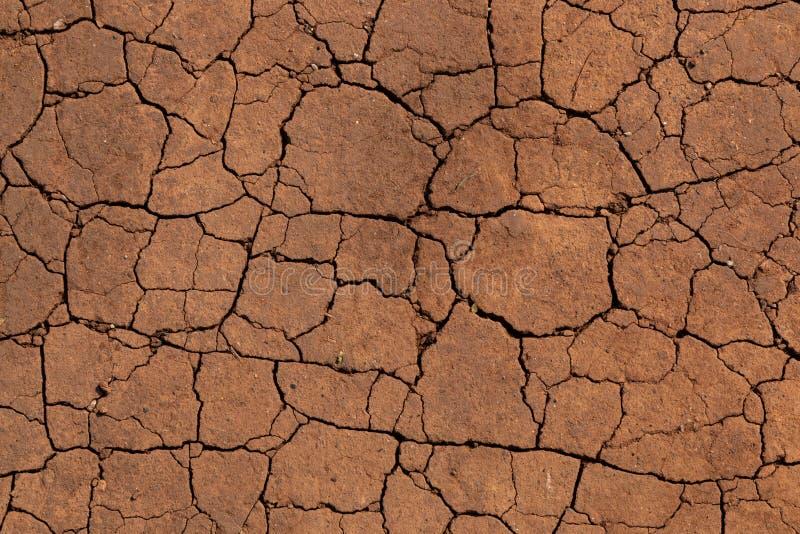 Quebras em um solo seco imagens de stock royalty free
