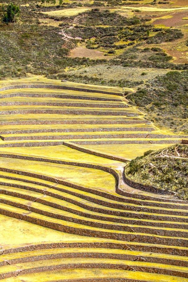 quechua fotos de archivo