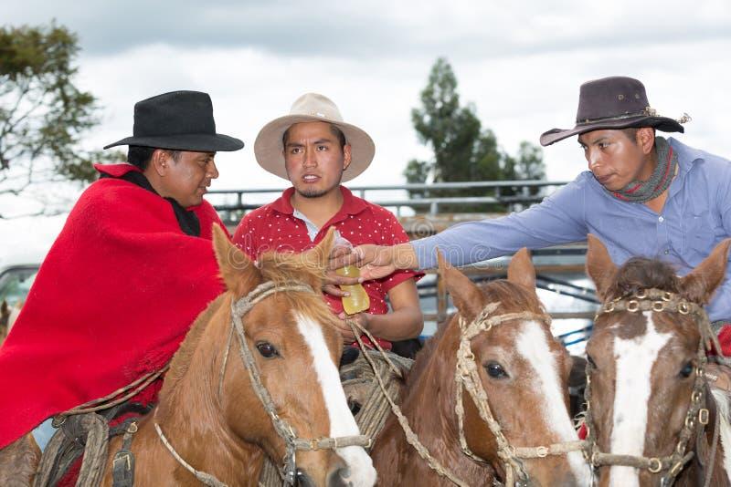 Quechua cowboys die een drank delen stock foto's