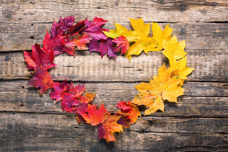 Queda amarela vermelha das folhas do quadro da forma do coração de madeira imagens de stock