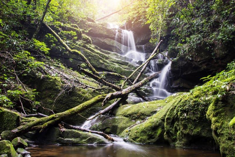 Queda bonita da água em uma rocha em Tailândia imagem de stock