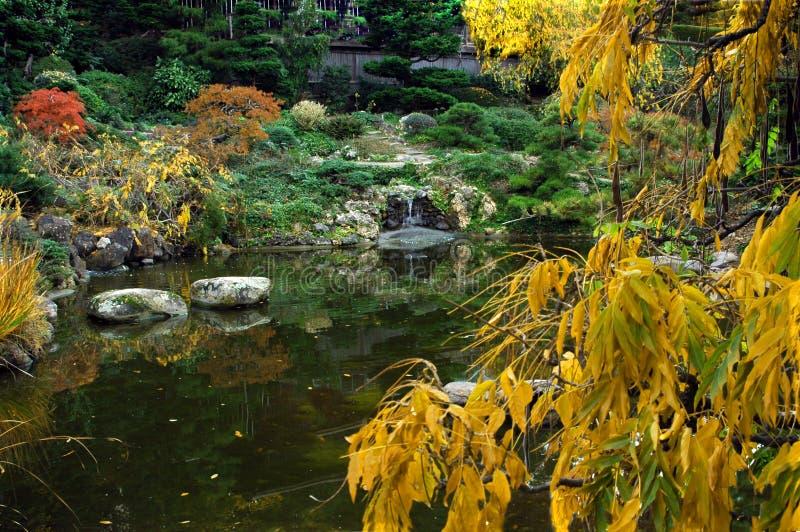 A queda colore o jardim japonês fotos de stock