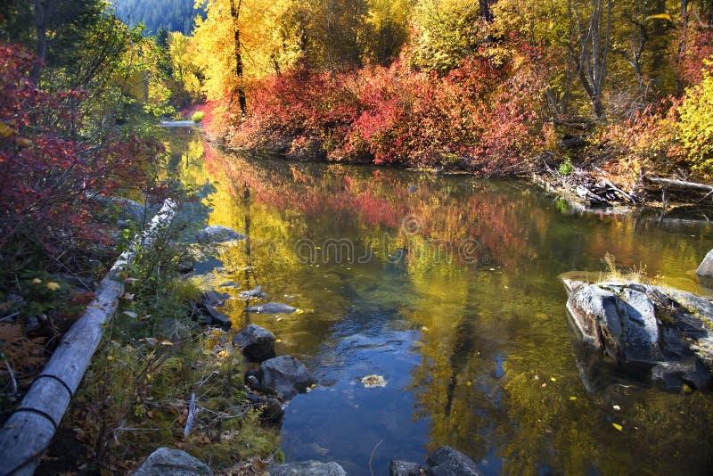 A queda colore o rio Washington de Wenatchee das rochas foto de stock royalty free