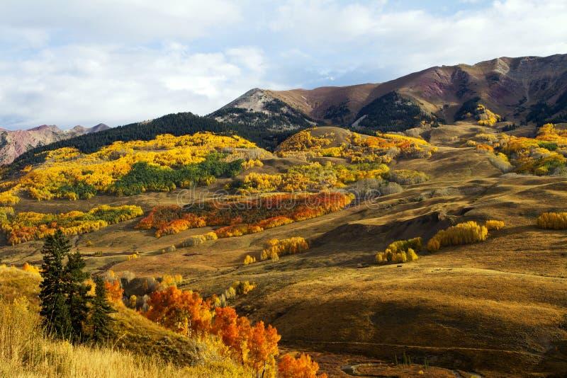 A queda colore perto do montículo Crested montagem Colorado imagem de stock royalty free