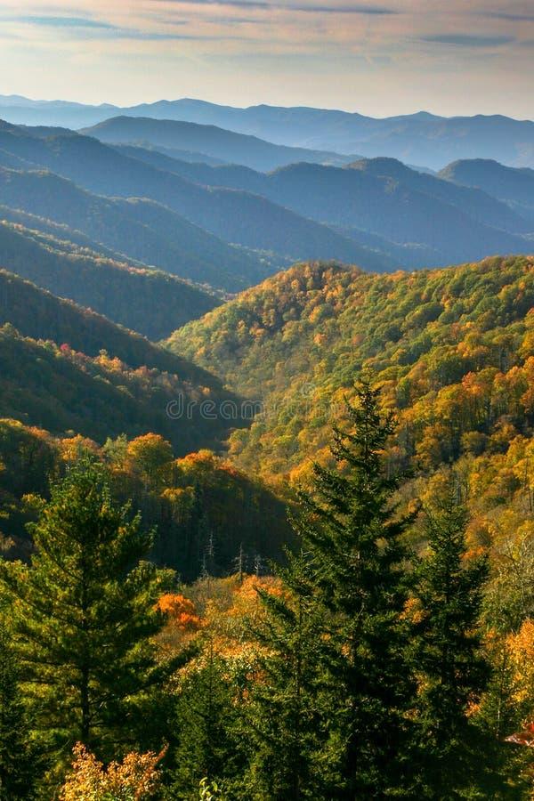 A queda colorida deixa o pontilhamento das montanhas infinitas nas montanhas fumarentos imagens de stock royalty free