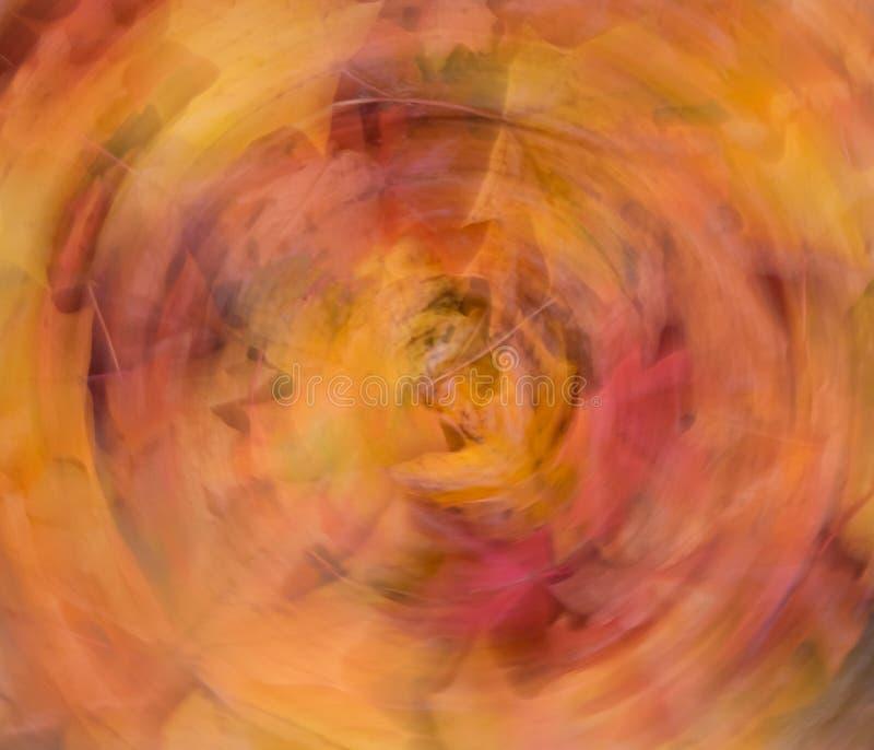 A queda colorida sae em um projeto abstrato circular fotografia de stock