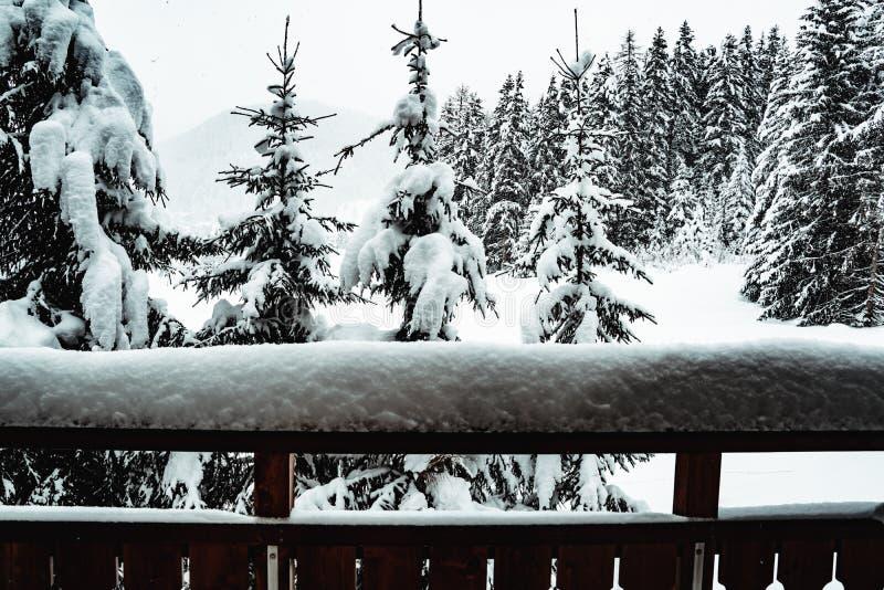 Queda da neve em Davos suíço fotografia de stock