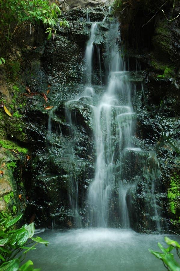 Queda da parede de pedra e da água imagem de stock